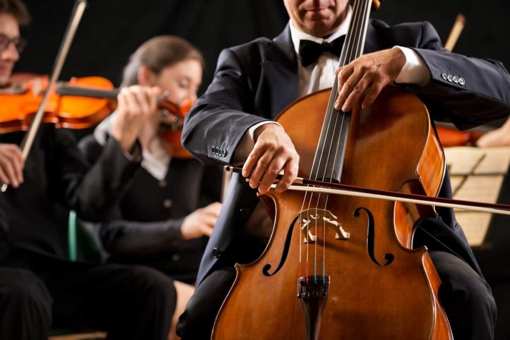 Aircraft charters for orchestras and their instruments